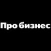 про бизнес лого